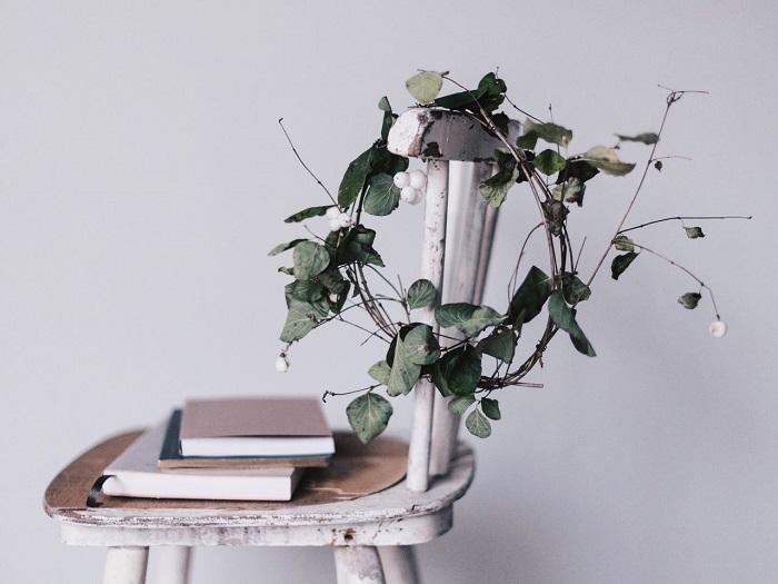 植物 (5).jpg