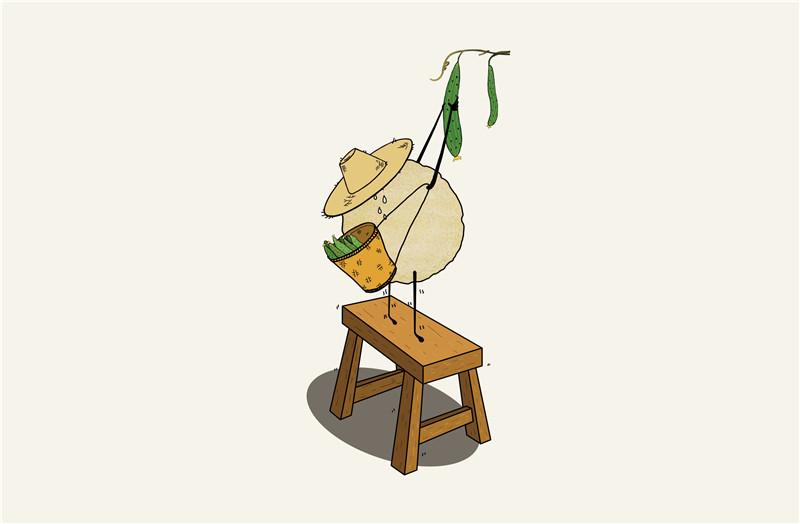 粗粮饼干(脆饼)包装设计.jpeg