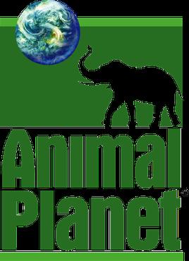 动物星球频道推出新标志13.png
