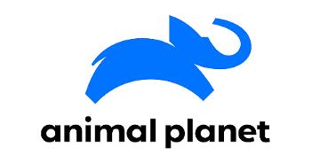 动物星球频道推出新标志
