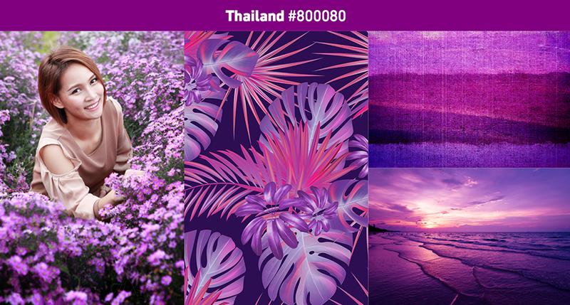 Shutterstock2019年色彩趋势:探索世界上最流行的色彩11.jpg