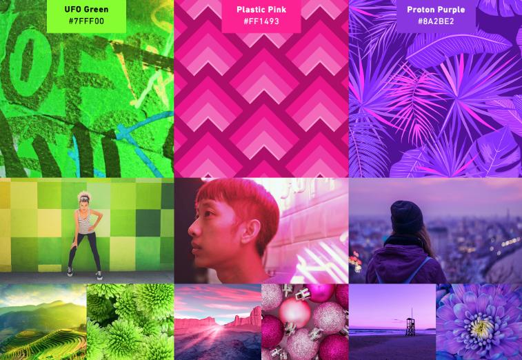 Shutterstock2019年色彩趋势:探索世界上最流行的色彩4.png