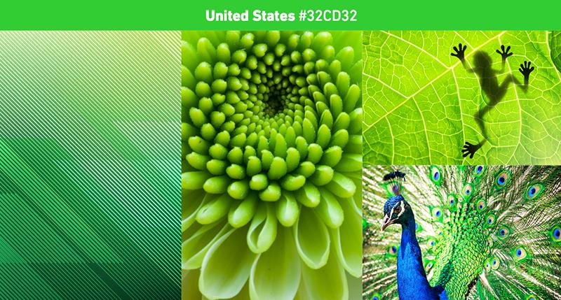 Shutterstock2019年色彩趋势:探索世界上最流行的色彩13.jpg