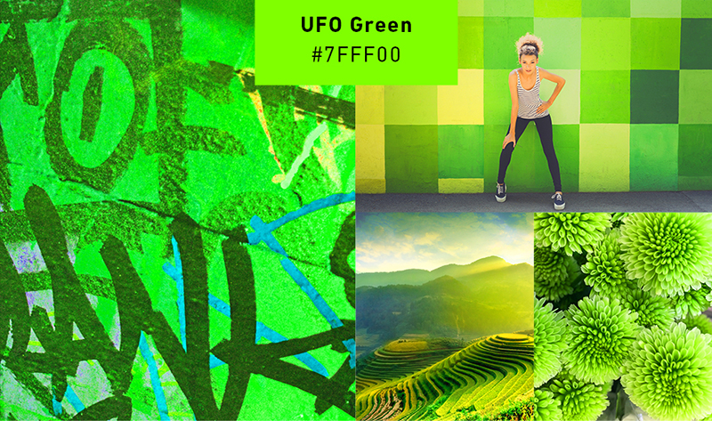 green-collage.jpg