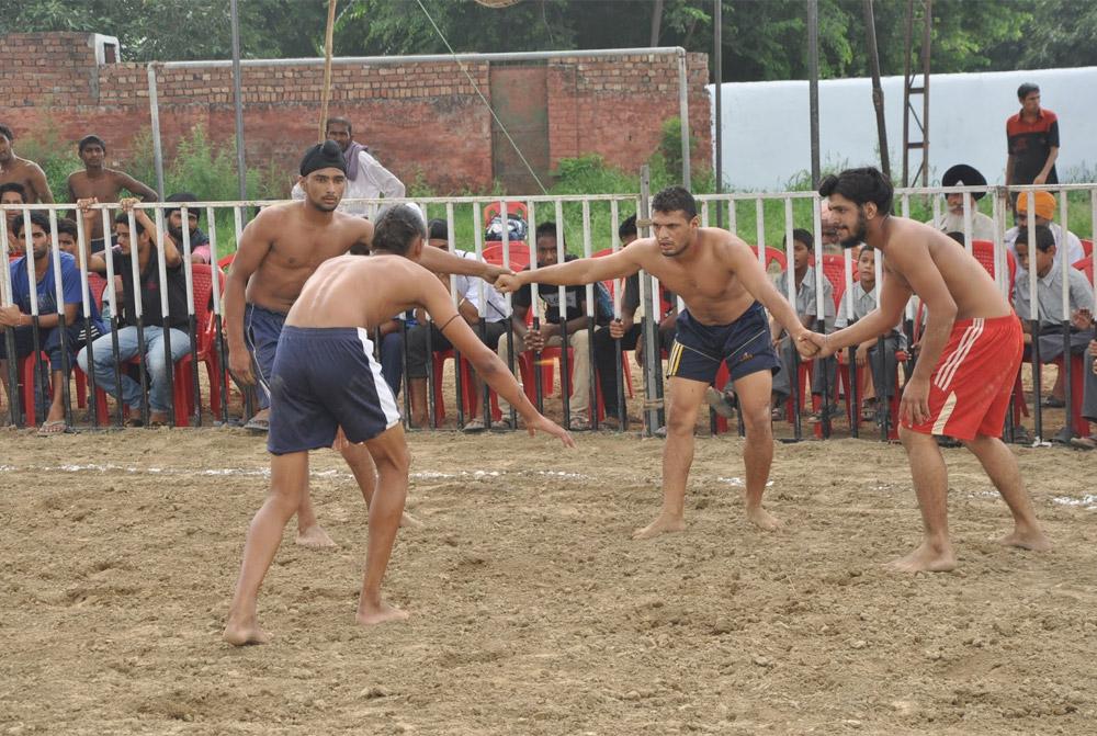 印度卡巴迪团队Puneri Paltan启用新队徽
